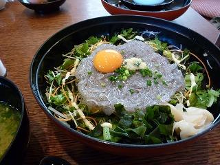 2010.9.20 江ノ島 024.jpg